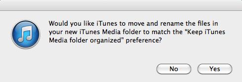 keep folder organized